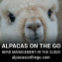 Alpacas on the Go! alpaca herd management software